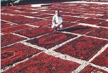 Catalogue Of Rugs / Here is an example of the kinds of rug you can expect to find at our warehouse.