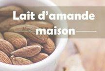 Boissons: recettes de lait végétal / Comment faire son #lait végétal maison (#homemade)?  Découvrez des recettes naturelles de lait d'amande, coco, soja, avoine, noix de cajou... Idéal pour vos smoothie, bowl, yaourts, desserts ou goûters. Bien plus sain pour votre santé. Plus d'inspiration sur le blog : www.celiadreams.be #plantbased #milk #homemade #faitmaison