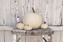 AUTUMN. / My favorite time of year! / by SWANK BY DESIGN