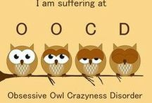 My Love of Owls