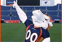 Denver Broncos / by Madelene Knoll