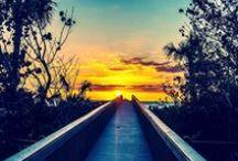 Paradise Coast Sunsets / Breathtaking sunsets from Florida's Paradise Coast.