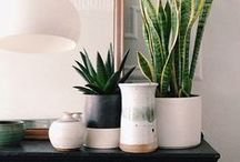 potted //