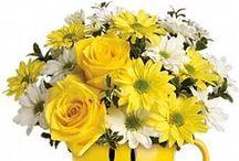 Mazzo (Bouquet)