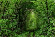 Tunnel Visions