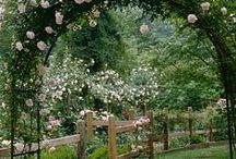 bahçe tasarım / güzel dekarasyonlarla