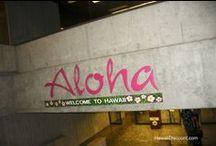 ALOHA  / by Carrie Frank