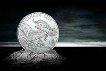 100 $ pour 100 $ / La populaire série de la Monnaie 100 $ pour 100 $ propose des pièces en argent pur à 99,99 % à leur valeur nominale de 100 $. / by Monnaie royale canadienne