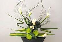 Bouquets / essentiel