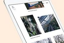 Web & app / The world wide web