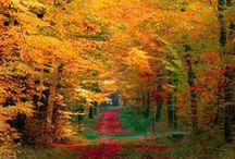 Φύση - Φθινόπωρο