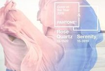 Pantone 2016 - Rose quartz and Serenity