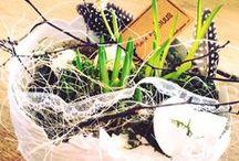 Voorjaar by Suus / Heerlijk als de vogeltjes weer beginnen te fluiten! Op dit bord vind je allerlei verschillende voorjaar en paas creaties die ik maakte. Ik hou van natuurlijke materialen en ik hoop dat ik je mag inspireren! Love Suus ♥ www.facebook.com/madebysuus www.instagram.com/madebysuus_