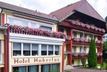 AKZENT Hotel Hubertus***S / Gemütlichkeit und echte Gastlichkeit erwartet die Gäste im familiengeführten AKZENT Hotel Hubertus in Bad Peterstal im Schwarzwald. Das Hotel bietet sowohl Aktivurlaub als auch entspanntes Wellnessvergnügen.     Kontakt: AKZENT Hotel Hubertus, Insel 3, 77740 Bad Peterstal-Griesbach   Tel.: +49 (0)7806 595   E-Mail: info@hubertus-peterstal.de   www.akzent.de/bad-peterstal