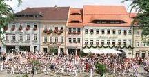 AKZENT Hotel Goldner Hirsch**** / In der Lessingstadt Kamenz befindet sich das AKZENT Hotel Goldner Hirsch. Das von 450 Jahre Geschichte geprägte, aber modern und komfortabel eingerichtete Haus lädt zum Entspannen ein.  Der historische Weinkeller ist für kleine Familien- oder Geschäftsfeiern für bis zu 12 Personen nutzbar  || Kontakt: AKZENT Hotel Goldner Hirsch, Markt 10, 01917 Kamenz | Tel.: +49 (0)3578 7835 0 | E-Mail: info@hotel-kamenz.de | www.akzent.de/kamenz