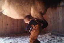 Kids & animals / by Renee McGrew