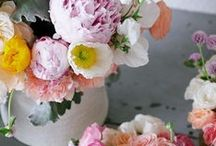 BLOOMS / What girl doesn't love a beautiful bouquet of flowers? / by Ella Moss