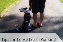 Dog Training Tips & Articles / My favorite Dog Training Tips & Articles from websites, trainers & bloggers I love.