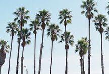LA Livin'