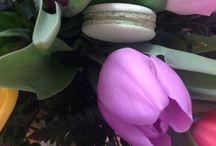 Wonders Macaron Webshop / Stílusos, álomízű kézműves macaronokat forgalmazunk az eredeti francia recept alapján születésnapra, esküvőre (nász- és köszönőajándékként), rendezvényekre házhozszállítással! http://www.wonders.hu