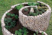 jardin garden