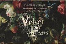 Foxglove Spires Garden / Beautiful Garden in Tilba.NSW. The book Velvet Pears is the story of this Garden.