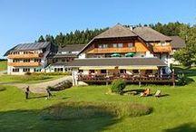 AKZENT Hotel Kaltenbach / Das familiengeführte AKZENT Hotel Kaltenbach in Triberg/Schönwald im Schwarzwald verfügt über 16 Zimmer. Das Hotel ist umgeben von 16 Hektar eigenem Feld und Wald mit sonniger Gartenterrasse, großer Liegewiese mit Korbball, Fußballwand und Kinderspielplatz.   || Kontakt: AKZENT Hotel Kaltenbach, Oberort 3, 78141 Schönwald | Tel.: +49 (0) 77 22-96 35 - 0 | E-Mail: info@hotel-kaltenbach.de | www.akzent.de/hotel-schoenwald-im-schwarzwald