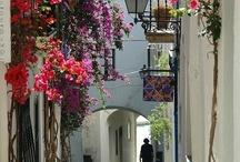 TRAVEL DREAMS IN SPAIN & PORTUGAL