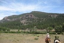 Scenic / Nothing like a good horse and an open trail!