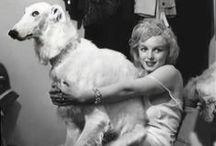 Norma Jean vs. Marilyn Monroe