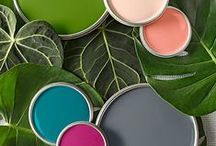 Colour Palettes + Mood Boards / Colour palette inspiration, trends and mood boards