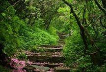 Muma Nature / Muma Nature in all her beauty and divineness