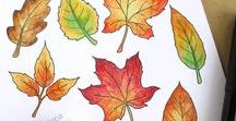 Autumn/ Bonfire Night/ Thanksgiving / Autumn / Fall, Bonfire Night and Thanksgiving inspiration, beautiful Autumn leaf colours , DIY projects, designs and more!