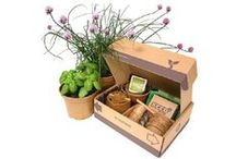 Grow Your Own / Grow your own plants and vegetables with these growing kits, seed kits and instant gardens.