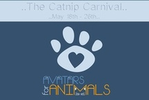 Avatars for Animals / Avatars for Animals main goal is to focus on small, underfunded shelters and welfare groups. For more info check Harlow´s blog post: http://www.harlowheslop.com/archives/3644 and the flckr group:http://www.flickr.com/groups/2249903@N22/ Location: http://maps.secondlife.com/secondlife/Sunshine%20Mist/219/68/3501