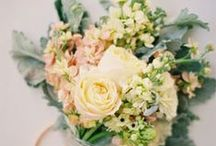 Wedding idea / by Katie Gail Photography