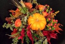 Enchanting Seasonals / Designed by Enchanted Florist for those special occasions.
