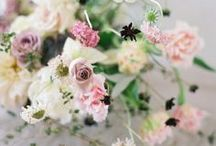 Bloom / Bouquets