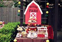 Fazenda / Decoração de Festas / Party Decor Farm
