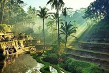 Bali / Travel tips and information for visiting Bali