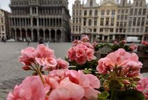 Belgium / Information and tips for visiting Belgium