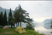 Camping in the Wilderness / Beneath the deep woods, under the starry sky, all alone in the wild, just you and nature.