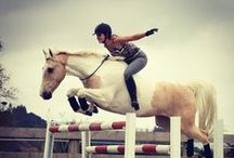 My fav horse riders