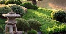 ⇞ jardin  ⇞