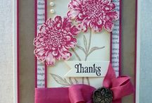Scrapbooking STAMPIN' UP / by Molly O'Neill Jones