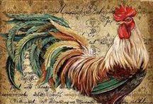 rooster and chiken. kukko ja kana