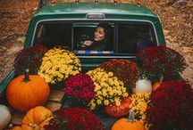 Autumn / All things autumn! #autumn #fall #aw #autumnal