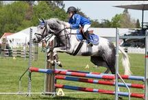 ACG Strathallan Equestrian Academy / The ACG Strathallan Equestrian Programme provides an environment for young riders which is both supportive and challenging.