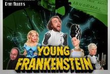 Young Frankenstein: A Musical Comedy / It's ALIVE! A wickedly inspired re-imagining of the Frankenstein legend based on Mel Brooks' classic comedy masterpiece,   Tyson Bates as Frederick Frankenstein Steven Santos as Igor Patti O'Hara as Frau Blucher DeAnna Cali as Inga, Jonathan Perry as The Monster