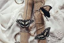 """Papillons / """" Les papillons ne sont que des fleurs envolées un jour de fête où la nature était en veine d'invention et de fécondité """" George Sand"""